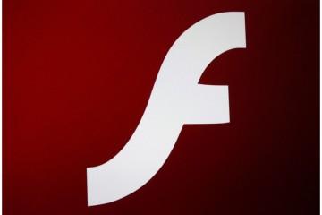 HTML5 or Flash